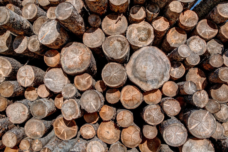 MESSAGE IMPORTANT – Achat de bois privé